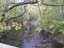 Bridge near Haden Hill Park, Cradley Heath (Gordon Griffiths)