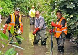 River Stour volunteers