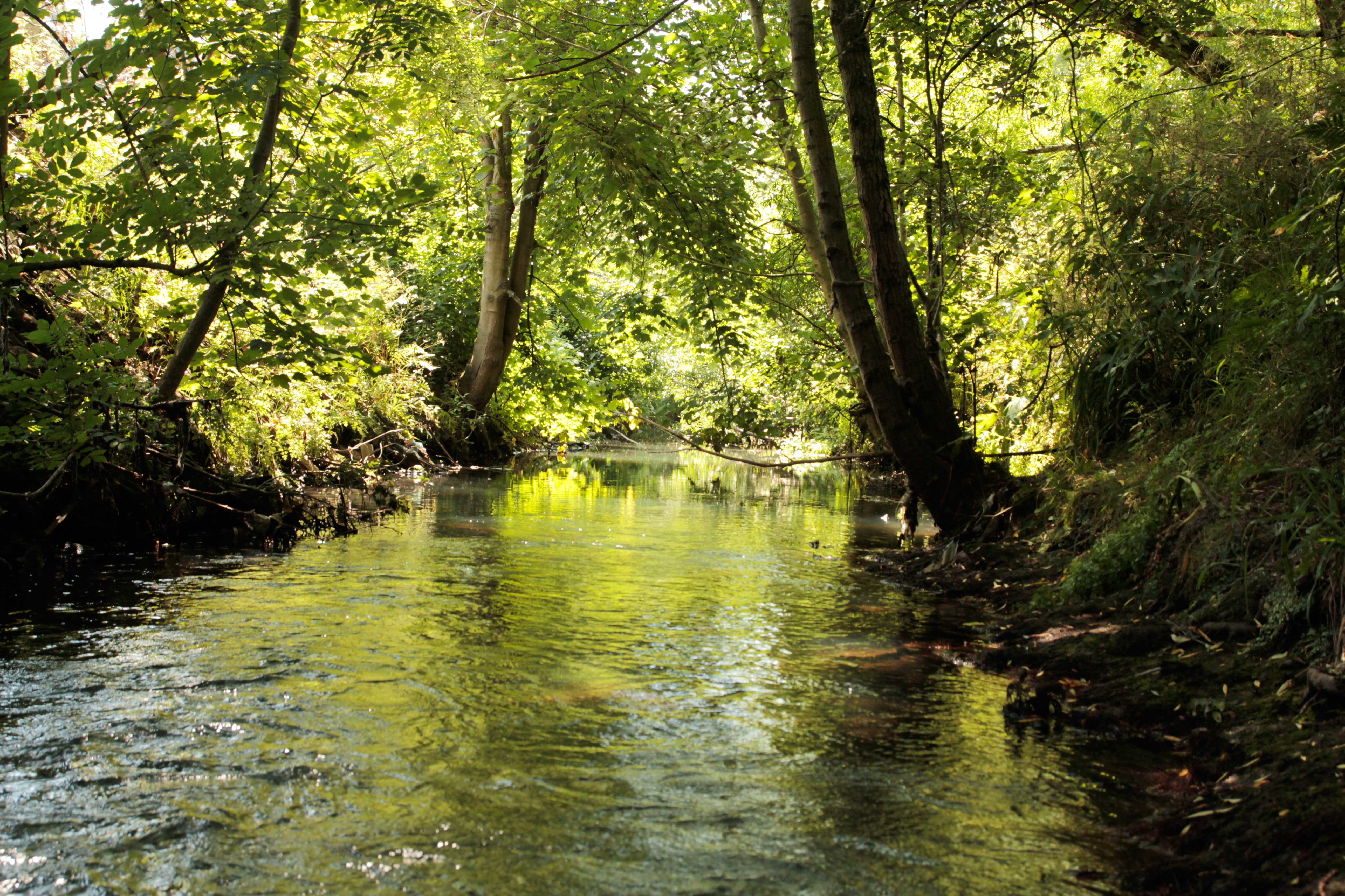 River Stour Photo Competition And Calendar 2014