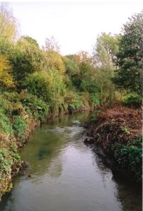 The Stour at Cradley (photo. Nigel Brown 2002)