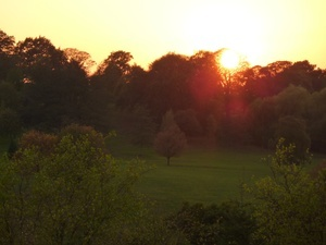 Stevens-Park-Wollescote-Sunset