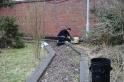 Stevens-Park-Wollescote-Wild-Garden-3