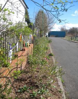 Hillside-Herbs-road