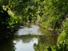 River Stour - Kinver - Beth Gurney