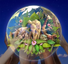 hands-save-beautiful-transparent-earth