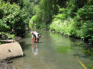 River Stour behind Lion Health Centre